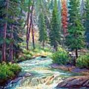 Sparkling Stream Art Print