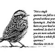 Sparrow Drawing With Scripture Art Print by Janet King