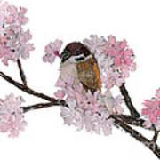 Sparrow Art  Art Print
