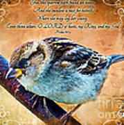 Sparrow With Verse And Painted Effect Art Print