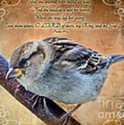 Sparrow With Verse Art Print