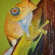Speckled Frog Art Print