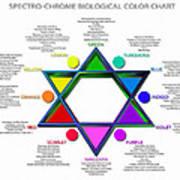 Spectro-chrome Art Print