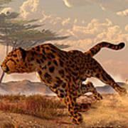 Speeding Cheetah Art Print by Daniel Eskridge