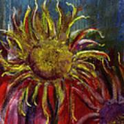 Spent Sunflower Art Print
