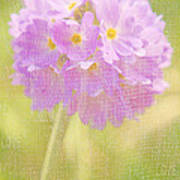 Sphere Florale - 01tt01a Art Print by Variance Collections