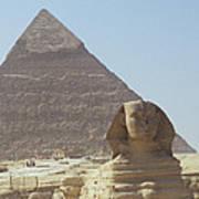 Sphinx Guard Art Print