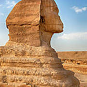 Sphinx Profile Art Print by Jane Rix