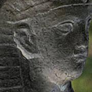 Sphinx Statue Head Grey Usa Art Print