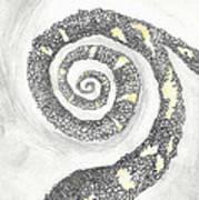 Spiral Art Print by Angela Pelfrey