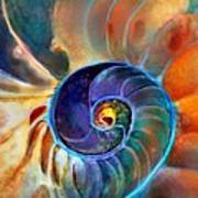 Spiral Life Art Print