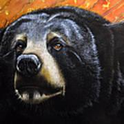 Spirit Of The Bear Art Print