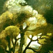 Spirit Of The Tarairi Tree Art Print by Patricia Howitt