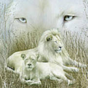 Spirit Of The White Lions Art Print