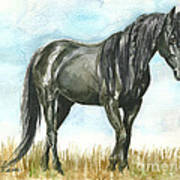 Spirit Wild Horse In Sanctuary Print by Linda L Martin