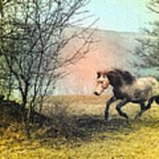 Spiritus Equus Art Print