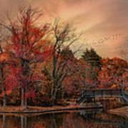 Splendor In The Park Art Print