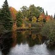 Splendor On A River Art Print