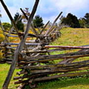 Split Rail Art Print