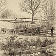 Split Rail Winter Sepia Art Print