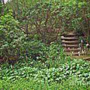 Spohr Gardens - Quissett - Falmouth - Ma - Cape Cod Art Print