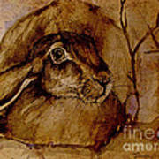 Spooked Hare Art Print
