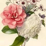 Spray Of Three Flowers Art Print