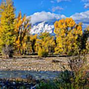 Spread Creek Grand Teton National Park Art Print