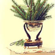 Sprigs Of Pine Art Print
