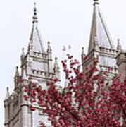 Spring At The Temple Art Print
