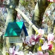 Spring - Birdhouse In Magnolia Art Print