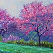 Spring Blossoms On Mill Mountain Art Print