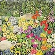 Spring Cats Art Print by Hilary Jones