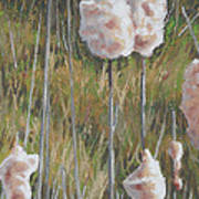 Spring Cattails I Art Print