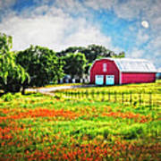 Spring Charm In The Hill Country Art Print