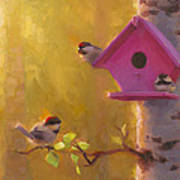 Spring Chickadees 1 - Birdhouse And Birch Forest Art Print