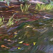 Spring Creek In Oak Canyon Park Art Print