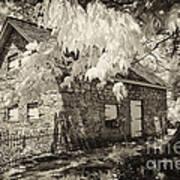 Spring Creek Mill Art Print