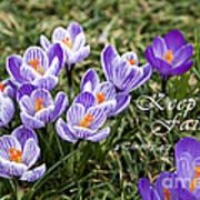 Spring Crocus With Scripture Art Print