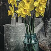 Spring Daffodil Flowers Art Print by Edward Fielding