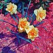 Spring Daffodils On Red - Horizontal Art Print