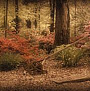 Spring Garden Art Print