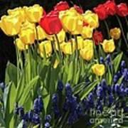 Spring Garden Sunshine Square Art Print