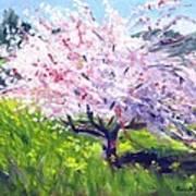 Spring Glory Art Print by Karin  Leonard