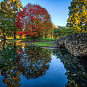Spring Grove In The Fall Art Print