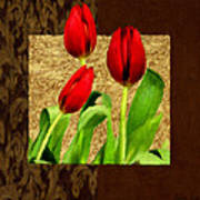 Spring Hues Art Print