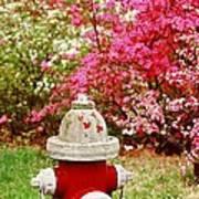 Spring Hydrant Art Print