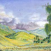 Spring In The Corona Hills Art Print