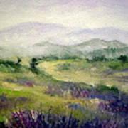Mountain Spring Iv Art Print