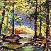 Spring In Woods Art Print